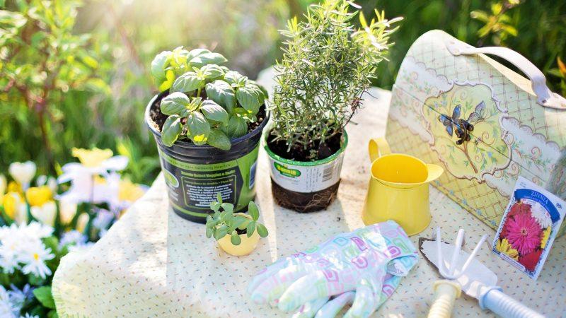 Hoe maak je de tuin gezellig en stijlvol